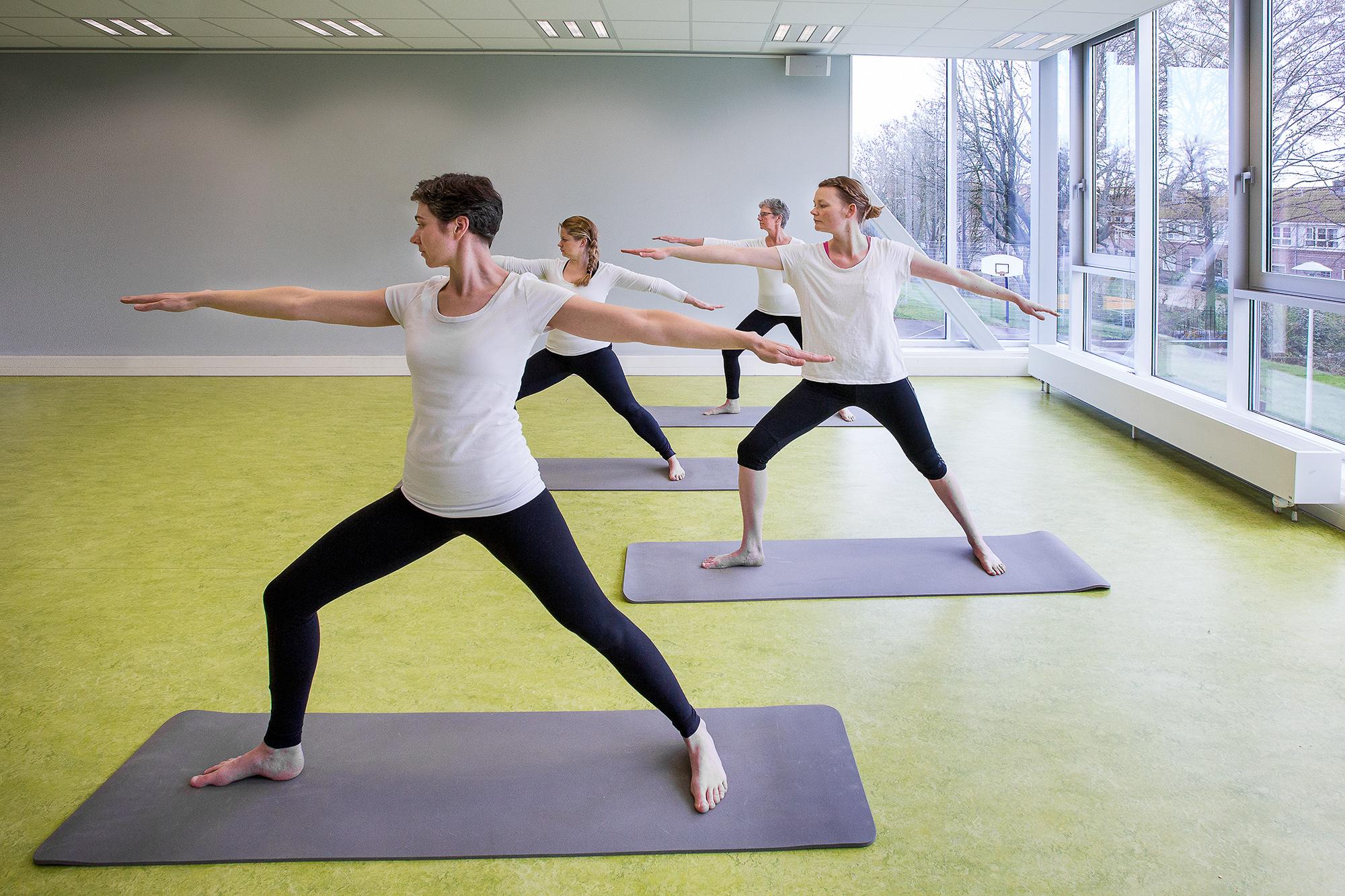 yoga zweverig, Tapas - Vurige inzet Yogalessen, Ondiep, Hatha yoga, Dananda